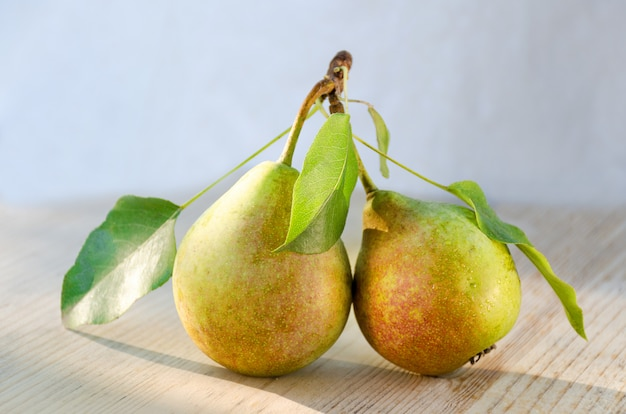 Two pears on one stalk with leaves.