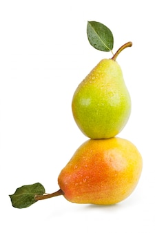 Two pears with leaves and water drops the waters isolated