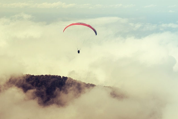 Two people are flying on a paraglider in the sky. toned. tandem flight