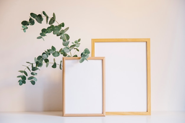 Two photo frames and branch