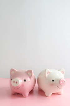 Копилка 2 на розовой таблице с белой предпосылкой. экономия денег для будущей инвестиционной концепции.