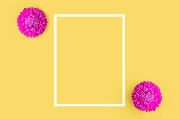 노란색 배경에 두 개의 분홍색 신선한 애스터 꽃입니다. 미니멀리즘. 봄 꽃 구성입니다. 로맨틱, 발렌타인, 여성, 어머니의 날 또는 결혼식 개념. 평평한 평지, 평면도, 복사 공간