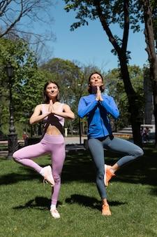 晴れた日に公園の芝生でヨガのポーズをしているスポーツウェアの2人のきれいな女性、太陽光線をキャッチ
