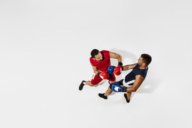 白いスタジオの背景、アクション、上面図に分離された2つのプロボクサーボクシング。健康な筋肉質の白人アスリートのカップルが戦っています。スポーツ、競争、興奮、人間の感情の概念。