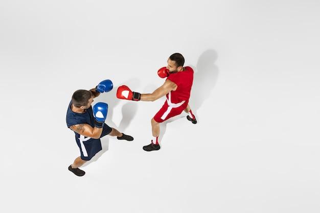 Два профессиональных боксера боксируют, изолированные на белом фоне