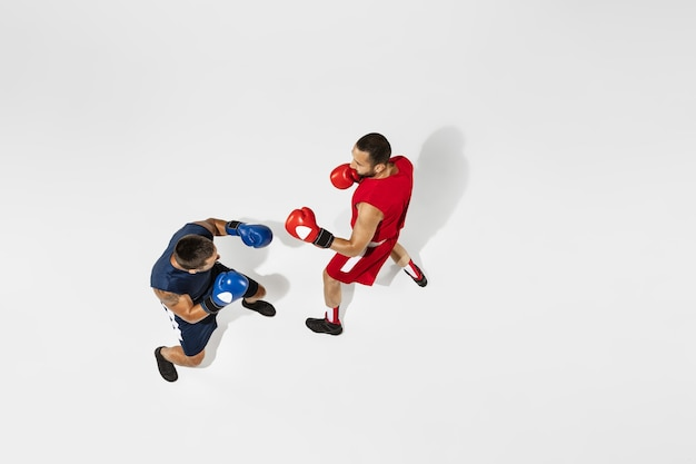Two professional boxers boxing isolated on white studio background, action, top view. couple of fit muscular caucasian athletes fighting. sport, competition, excitement and human emotions concept.
