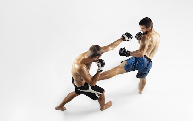 Two professional mma fighters boxing isolated on white