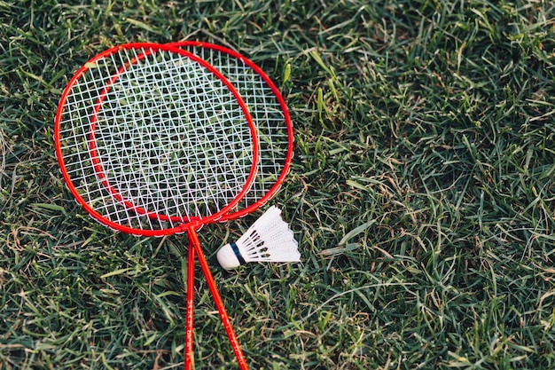 Two red badminton and shuttlecock on green grass