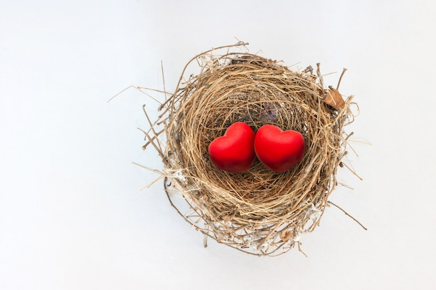 Two red hearts in nature bird nest