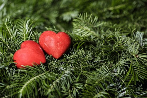 モミの枝の背景に2つの赤いハート。バレンタインデー