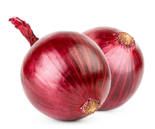 Two red onions isolated