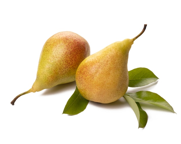 白地に緑の葉を持つ2つの熟した梨