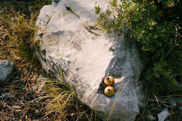 Два спелых плода граната лежат на скале