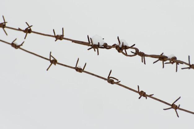 雪を背景に2列の有刺鉄線。閉じる。