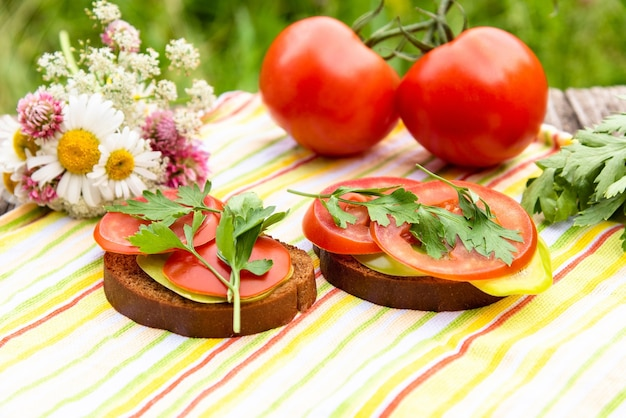 Two sandwiches with tomatoes and herbs in nature.