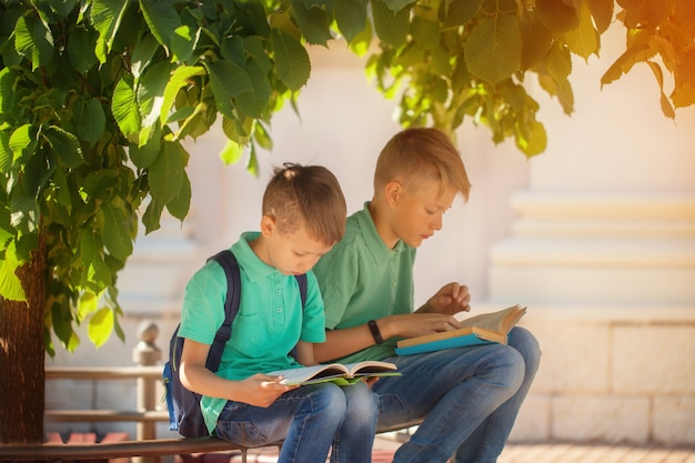 Two school kid boys sitting under tree and read books on a warm autumn day