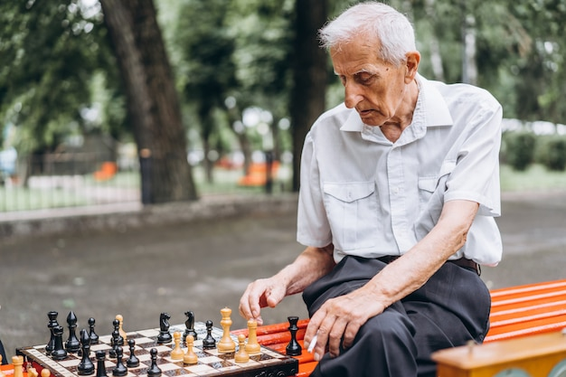 屋外の公園のベンチでチェスをする2つの年配の成人男性。
