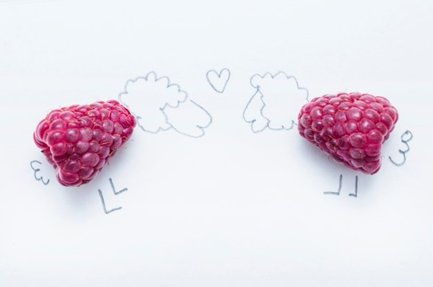 Two sheep made with raspberries on white background