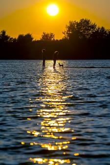 아이와 일몰 배경에 물 반사에 강아지의 두 실루엣. 아이들의 여가와 휴가.