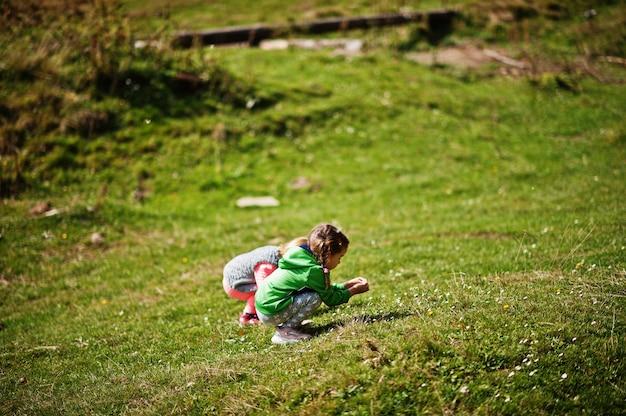 二人の姉妹が森の中の緑の野原で花を集めます。