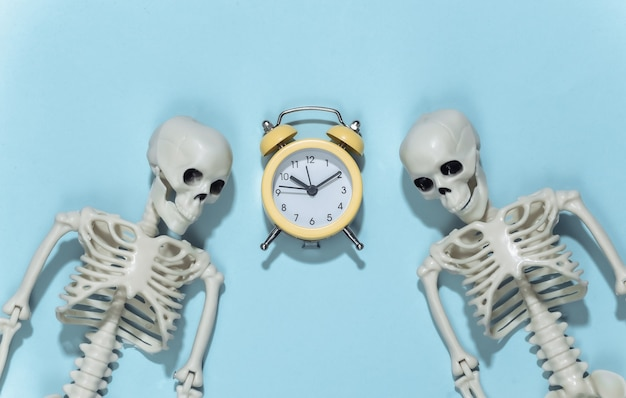 Two skeletons and alarm clock on a blue background.