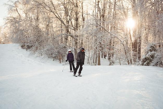 雪に覆われたアルプスでスキーをする2人のスキーヤー