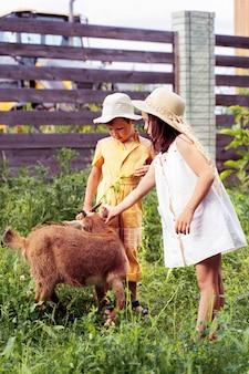 村の家の近くに2人の小さな子供がヤギを放牧