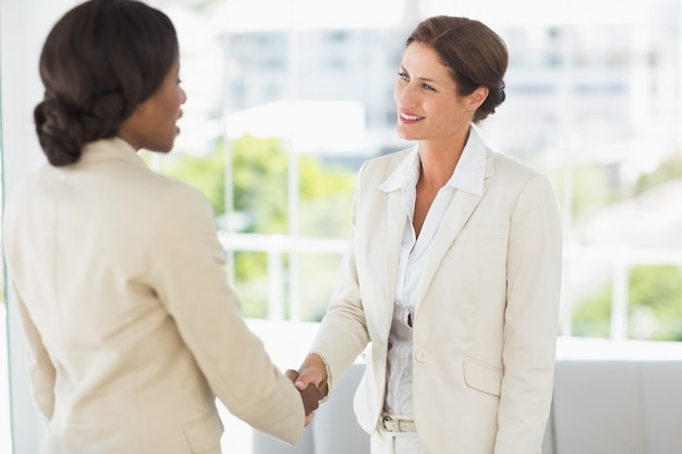 Two smiling businesswomen meeting and shaking hands