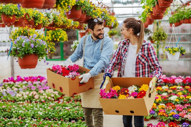 Two smiling small business owners walking in greenhouse and carrying boxes with colorful flowers