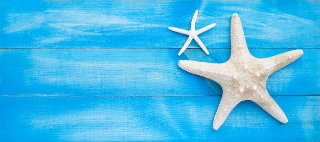 Two starfish on blue wooden