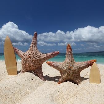 フィリピンの熱帯のビーチの砂の上に2人のヒトデサーファー