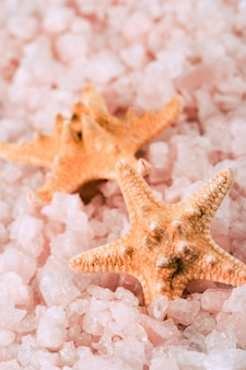 Two starfishes in the sea salt