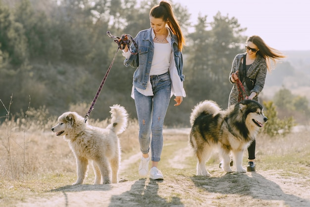Two stylish girls in a sunny field with dogs