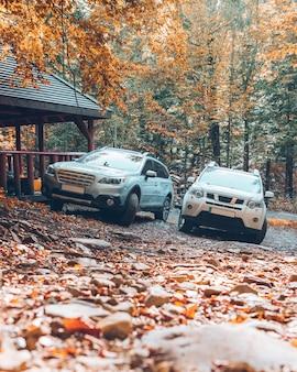가을 숲 복사 공간에 두 대의 suv 자동차