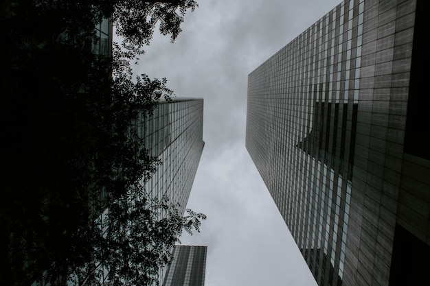 Two tall buildings facing each other shot from a low angle
