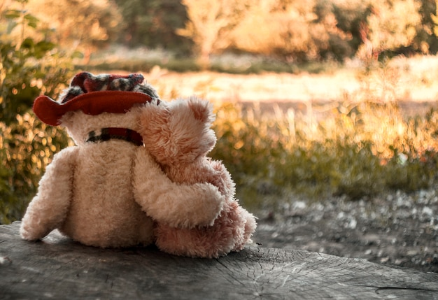 Two teddy bears are sitting on a stump hugging against the backdrop of an autumn forest