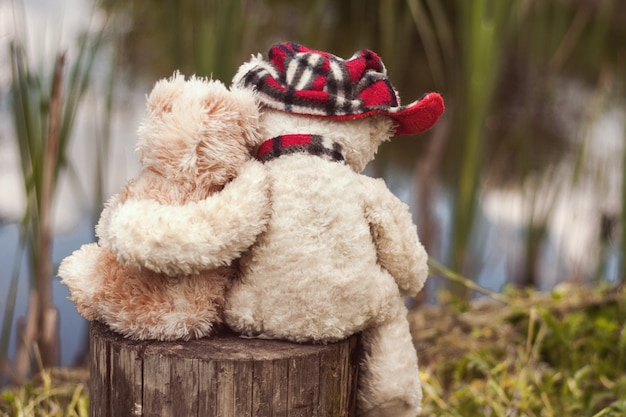 Two teddy bears, embracing, sit on a stump and look at the pond.