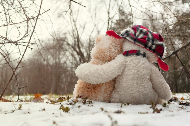 Two teddy bears hugging each other sitting in the snow in the forest. the concept of love, relationships.