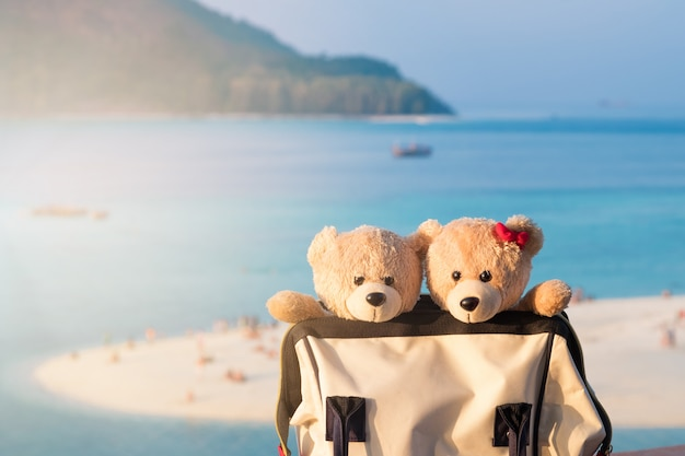 Two teddy bears sitting in valise. love and relationship concept. sunlight in the summer