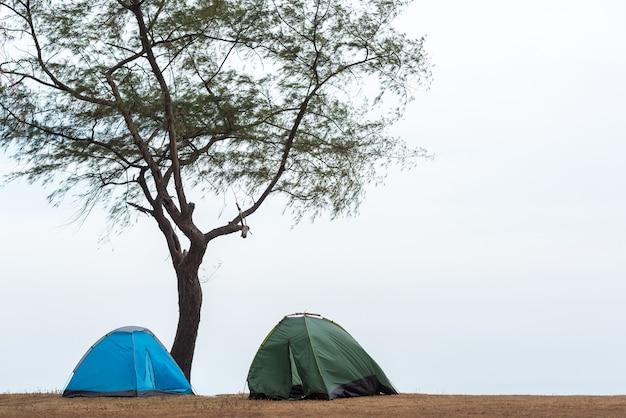 緑と青の背中の2つのテント自然の山々の真ん中にある芝生の丘の木々の下に広がっています。友達や家族とのキャンプ週末の長いアクティビティです。