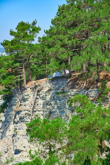 Two tents for tourism stand on a slope in a pine forest on the background of sea
