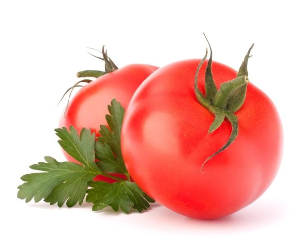 두 토마토 야채와 파슬리 잎 정물 흰색 배경에 컷 아웃에 고립