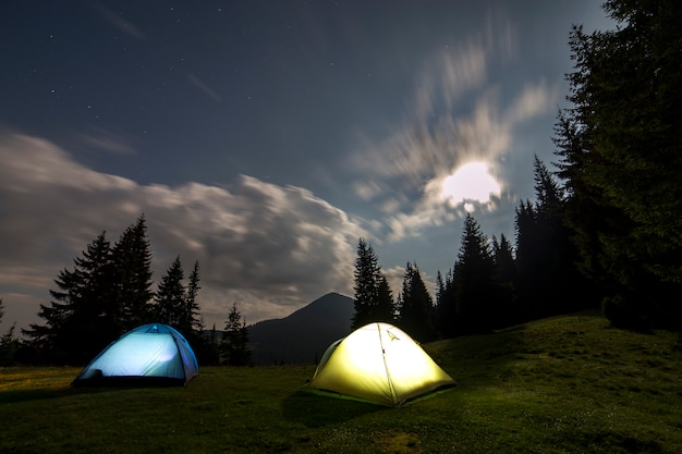 Two tourist tents on green forest clearing among tall pine trees.