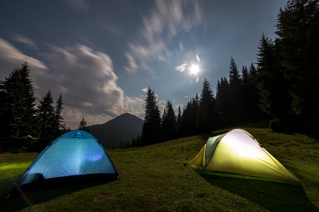 Two tourist tents on green grassy forest clearing among tall pine trees.