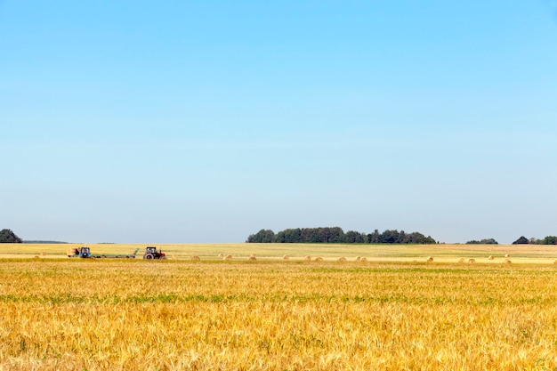 収穫会社でわらの藁の山を集める2台のトラクター。青い空の写真。現場の道路を走行する農業機械に焦点を当てる