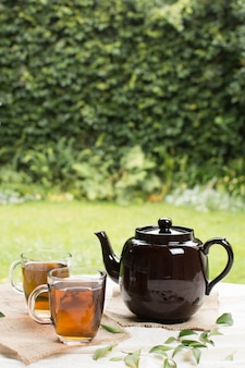 Two transparent mug of herbal tea with teapot on table in garden