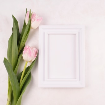 Two tulip flowers with blank frame on table