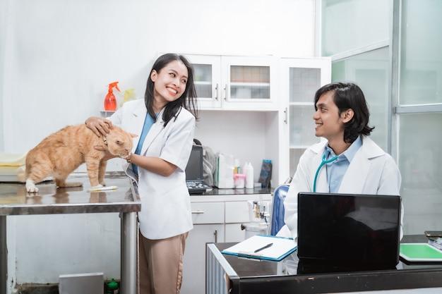 2人の獣医がおしゃべりをしていて、女性の獣医がクリニックのテーブルに猫を抱いています
