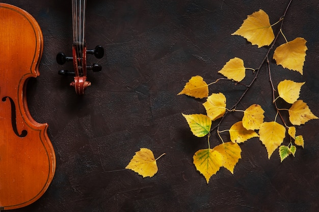 Two violins and birch branch with yellow autumn leaves.