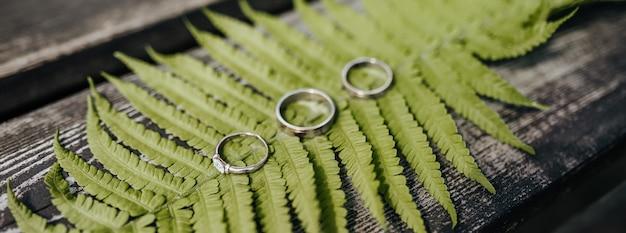 Два обручальных кольца и обручальное кольцо лежат на папоротнике на деревянном столе